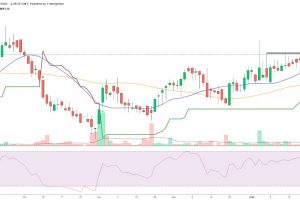 sell-guarseed-on-rise-chart